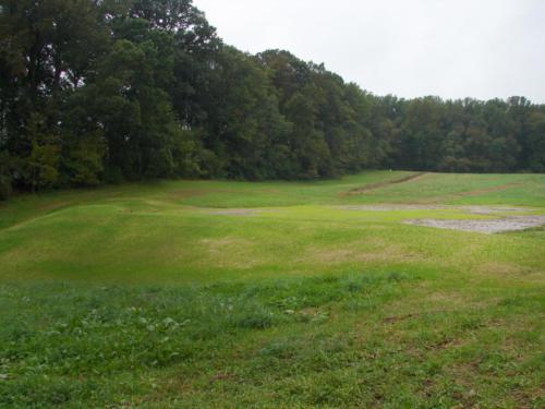 049 Seeded Wetland Pond